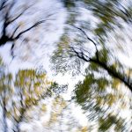 Feeling Light Headed And Dizzy: Know The Reasons